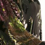 Plus Size Mother of Bride Kimono Jacket Floral Silk Velvet Pink