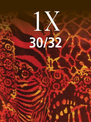 1X (30/32)