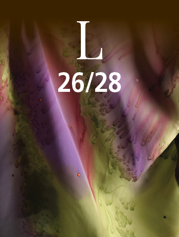L (26/28)